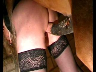 Самец пони трахает женщину фото 452-339